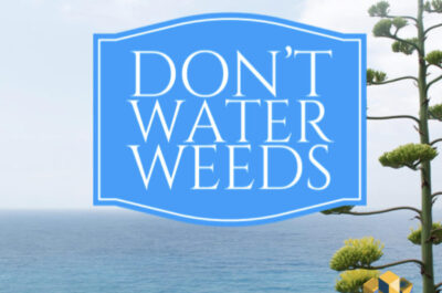 Don't water weeds